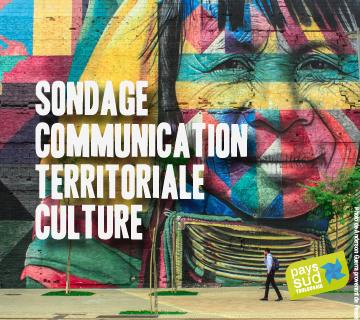 sondage_culture_vignette.png